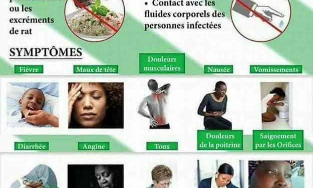 Des mesures préventives pour faire barrière à la fièvre de Lassa — Santé