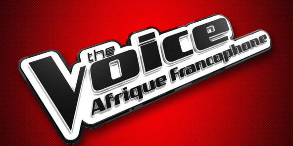 Logo the voice Arique Francophone