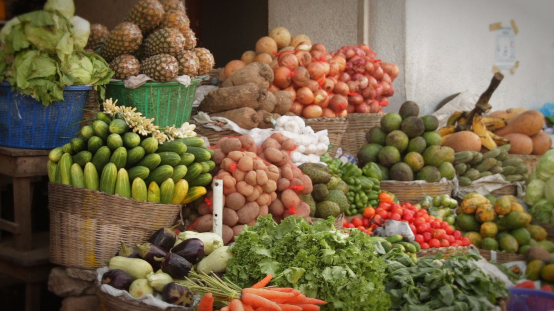 secteur de l'alimentaire