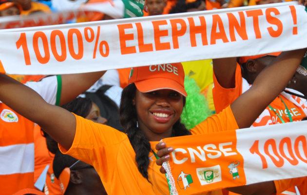 éléphants-actu 1